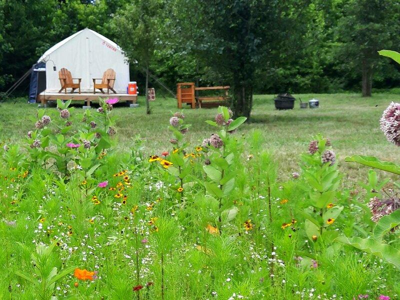 Tentrr Signature Site - Shepherd's Meadow, alquiler de vacaciones en Buckingham