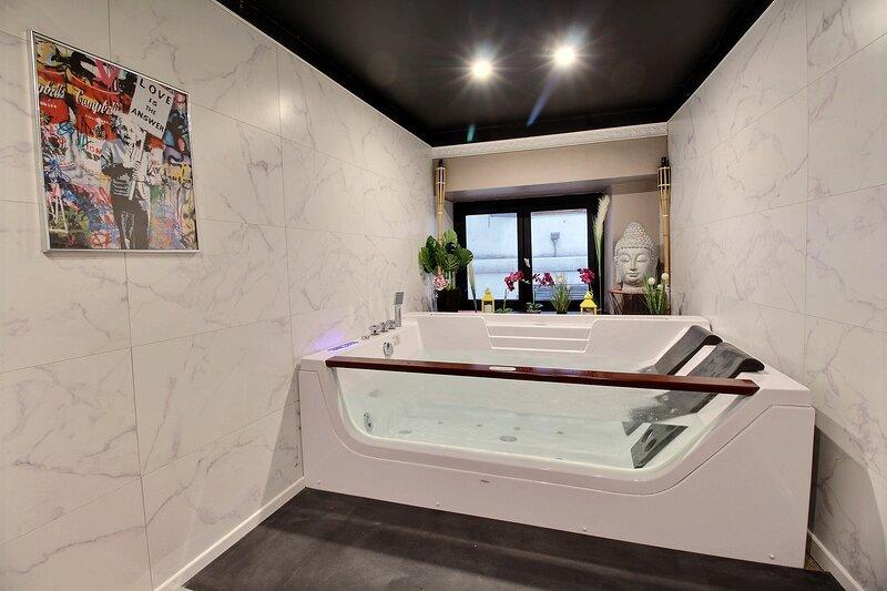 Jacuzzi Duplex Lyon proche centre-ville, holiday rental in Venissieux