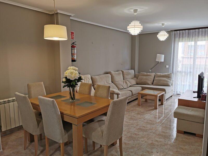 Apartamento Silvia, vacation rental in Hazas de Cesto