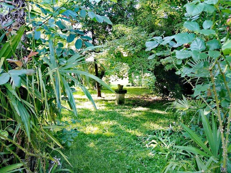 Bel appartement 2 chambres dans parc arboré avec piscine, étang et bois sur 7 ha, alquiler de vacaciones en Barbezieux-Saint-Hilaire