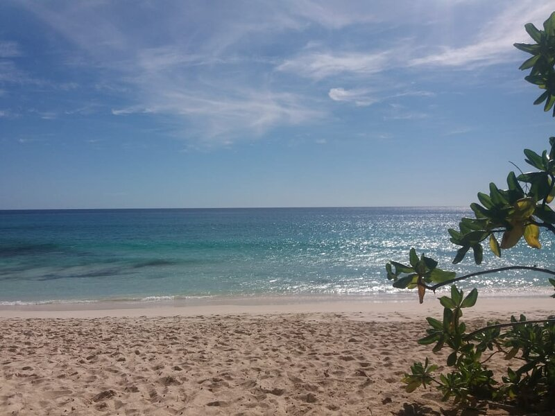 Royale Self Catering Apartments, alquiler vacacional en Anse Aux Pins