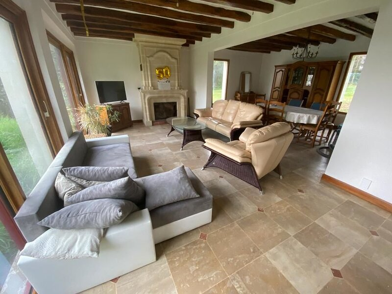 Amazing house with terrace & Wifi, holiday rental in Loudun