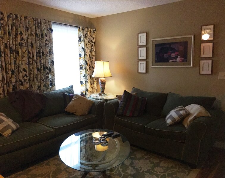 Happy Home Guest Suite - minutes to TIEC & FENC, holiday rental in Columbus