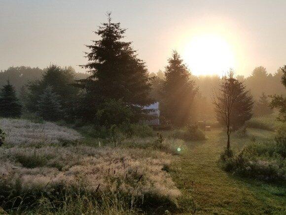 Tentrr Signature Site - Pastoral Paths at Little Farm Too, location de vacances à Davenport