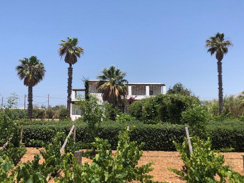 Palatial Villa Steps from the Beach, alquiler de vacaciones en Aliki