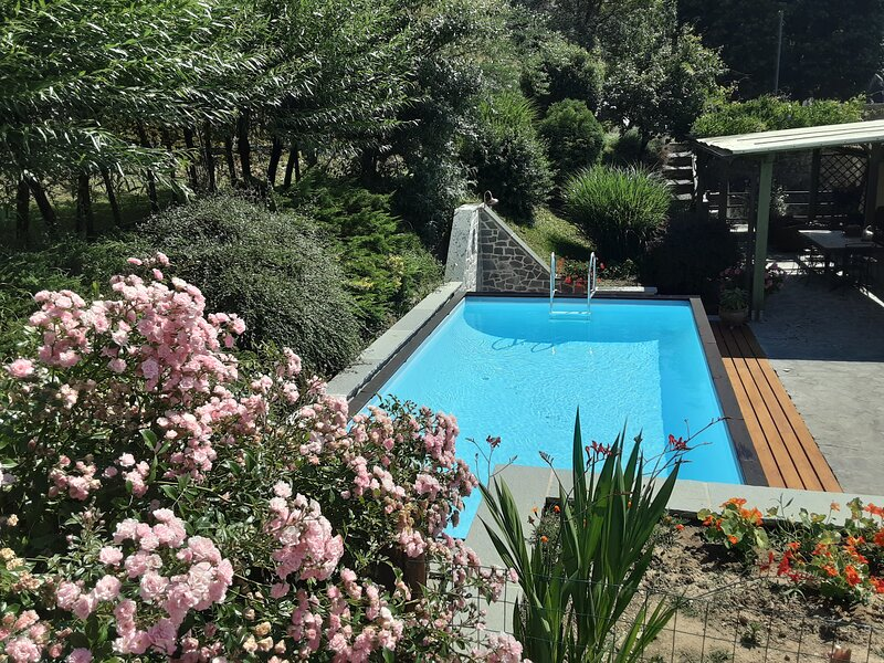 Villa in medieval village of Sillico, near Lucca with private swimming pool, holiday rental in Pievepelago