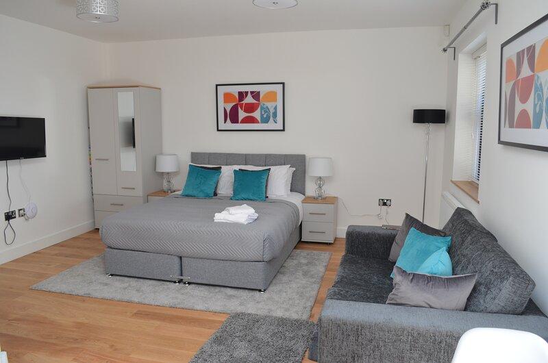 Light and bright deluxe studio apartment in Sydenham, aluguéis de temporada em Beckenham