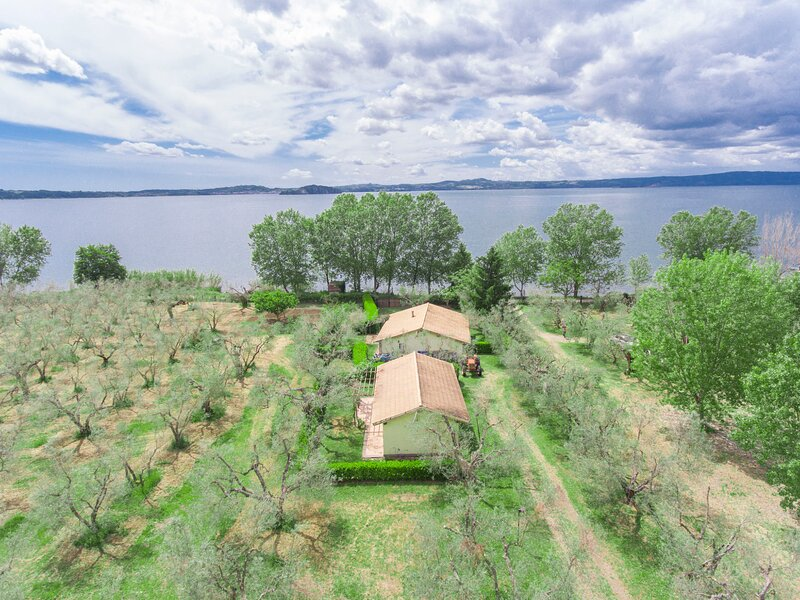 Ulivetto, vacation rental in Montefiascone