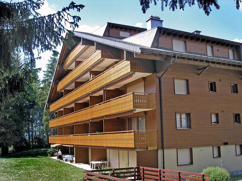 Azurite 12, alquiler vacacional en Alpe des Chaux