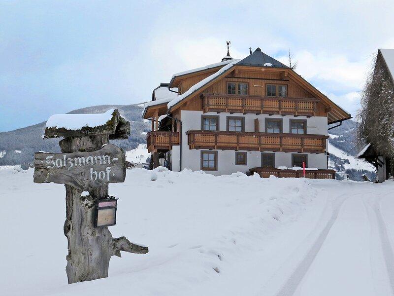 Salzmannhof (RMU210), holiday rental in Haus im Ennstal
