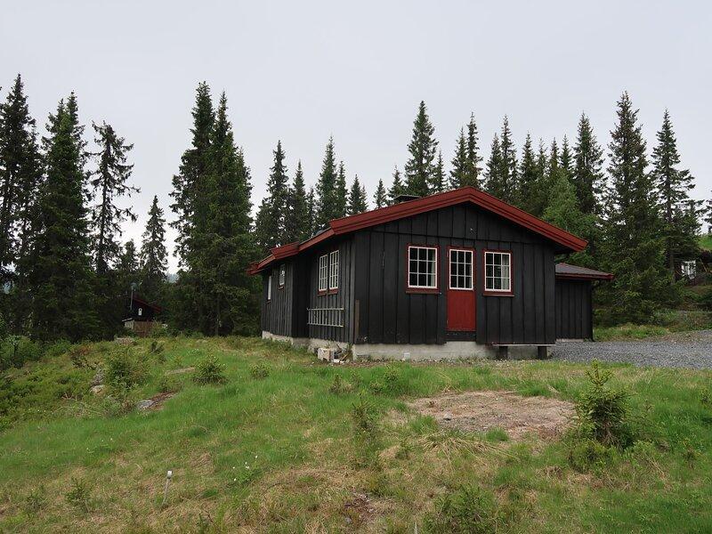 Liaråket (OPP209), holiday rental in Lillehammer