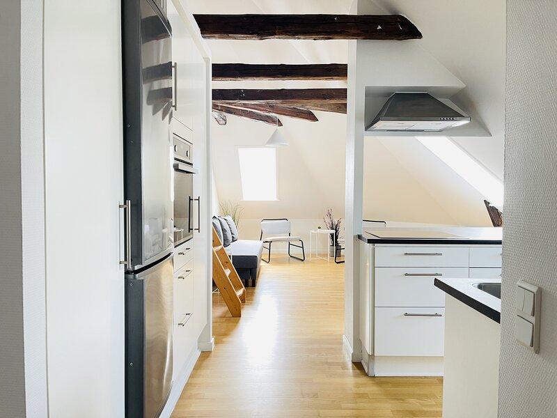 Adnana - Hasseris Mansion - 4 bedroom apartment, alquiler vacacional en Aalborg