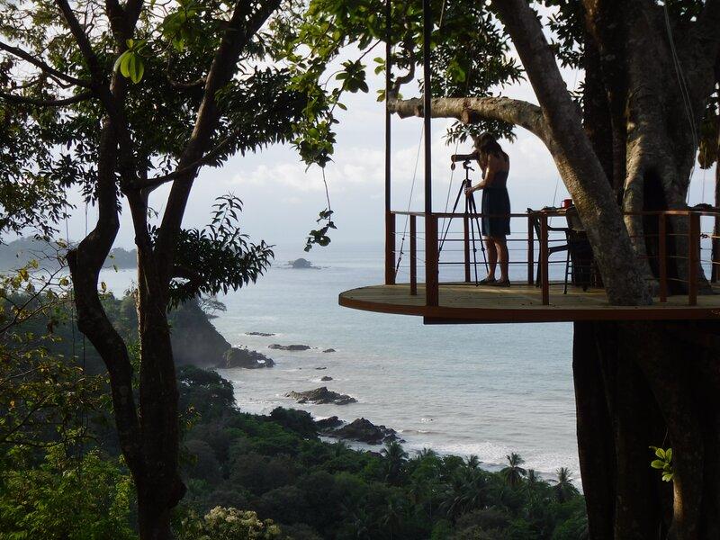 Tree house viewing platform