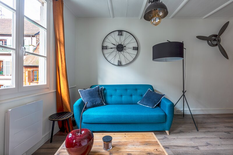 Strasbourg Hypercenter - Cosy standing industrial appartment, vacation rental in Strasbourg