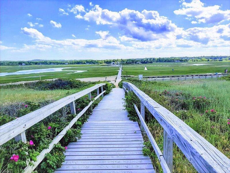 The Boardwalk over the saltmarsh to Town Neck BEACH