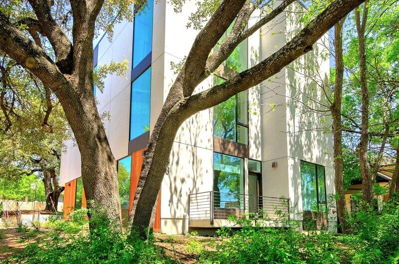 Tree,Tree Trunk,Building,Garden,Outdoors