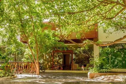 You can truly see a balance or art and nature in the architecture of Terrazas