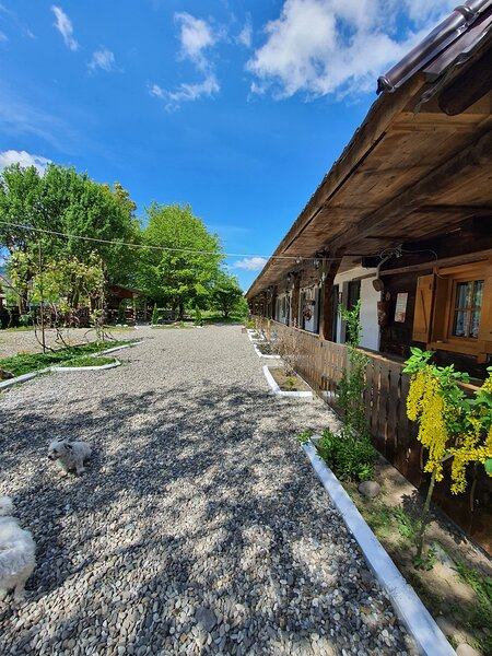 La Romaneasa, holiday rental in Sighetu Marmatiei