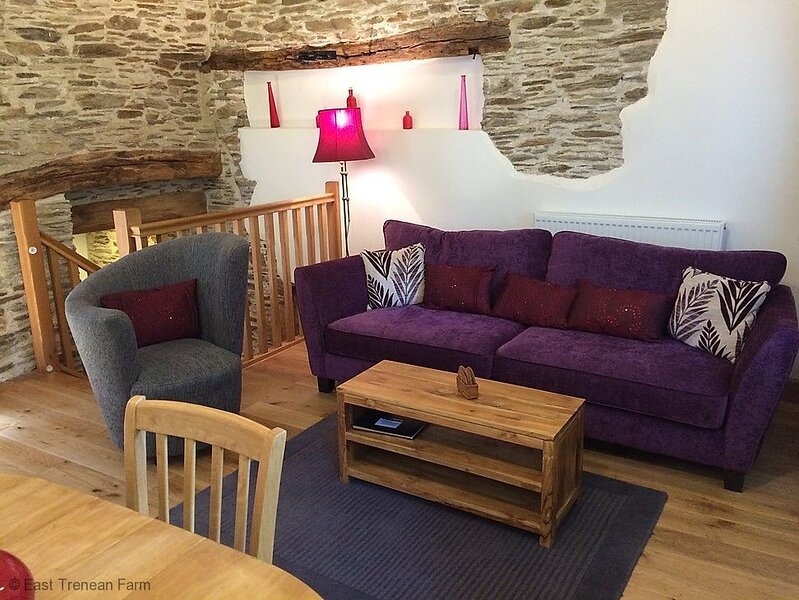 Water Mill - Luxury Cornish Cottage sleeping 4 with hot tub and private garden, location de vacances à Widegates