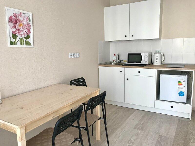 Апартаменты на Кирова 206А, holiday rental in Abakan