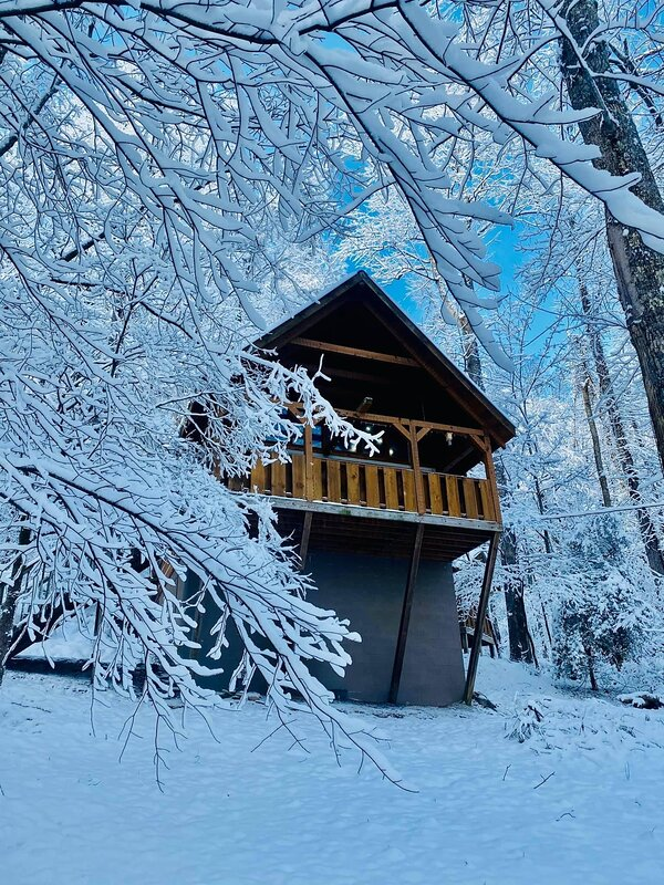 Building,Nature,Outdoors,House,Cabin
