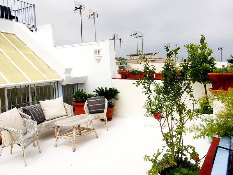 Eva Recommends Alberto Lista Ático, holiday rental in La Campana