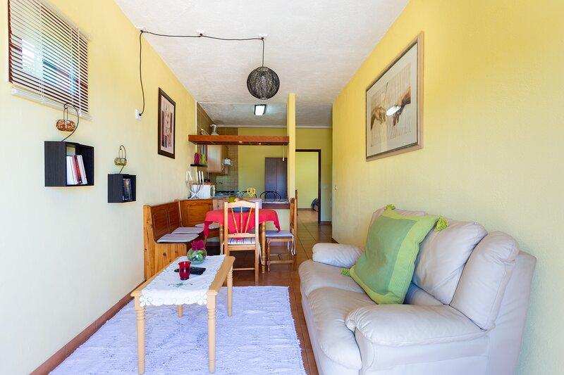Finca la Gaviota apartamento el Granito, location de vacances à La Guancha