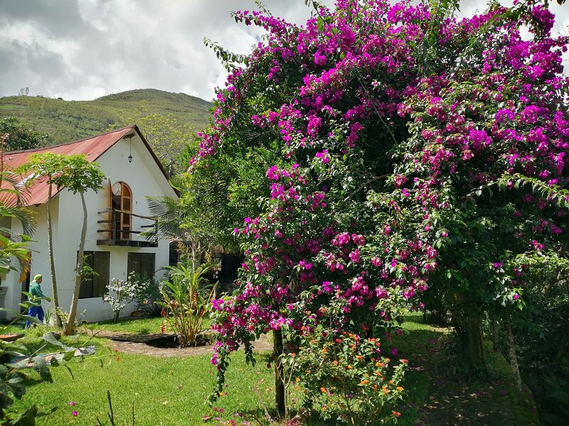 Cochapata Lodge, alquiler vacacional en Aguas Calientes