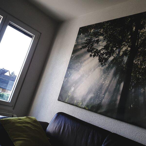 Ferienwohnung Elz bei Limburg, holiday rental in Diez