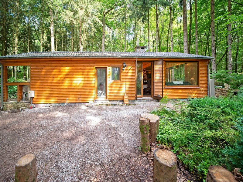 Comfortable Chalet in Oignies-en-Thiérache with Sauna, holiday rental in Nismes