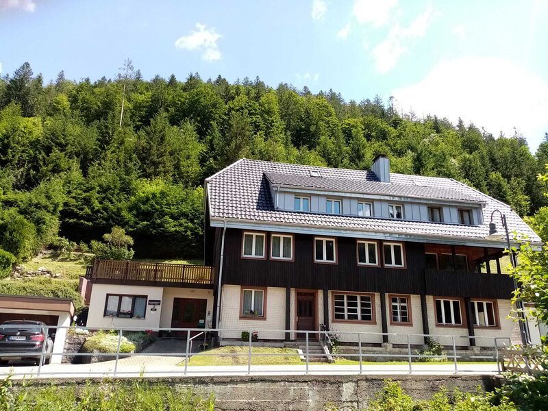 Mountain Apartment in St. Blasien with Balcony, holiday rental in Altglashuetten
