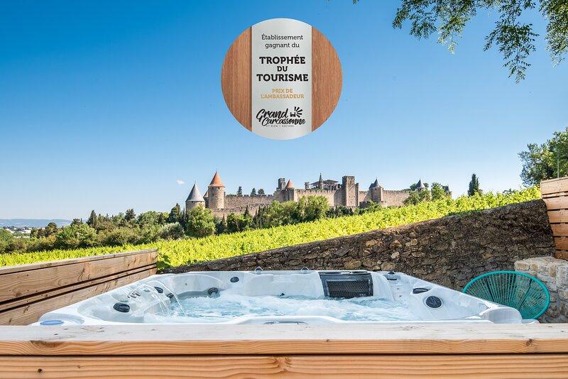 L'écrin de la Cité Carcassonne : Villa de luxe avec piscine chauffée, 2 jacuzzis, casa vacanza a Cavanac