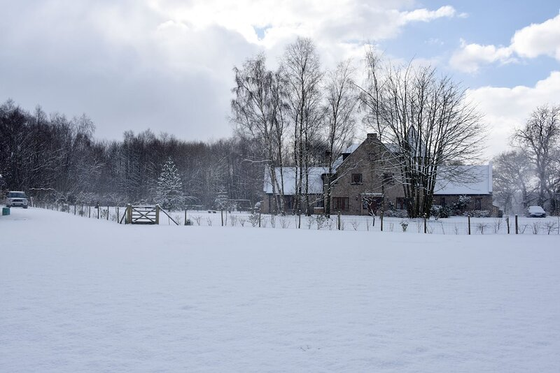 Le Chateau in the snow