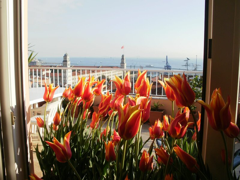 Penthouse Terraced flat, holiday rental in Istanbul
