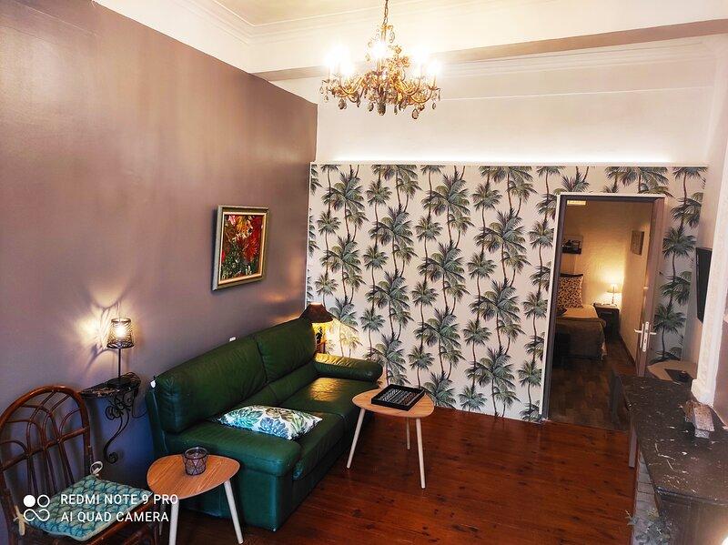 50m² pezenas centre historique 1er etage, holiday rental in Lezignan-la-Cebe