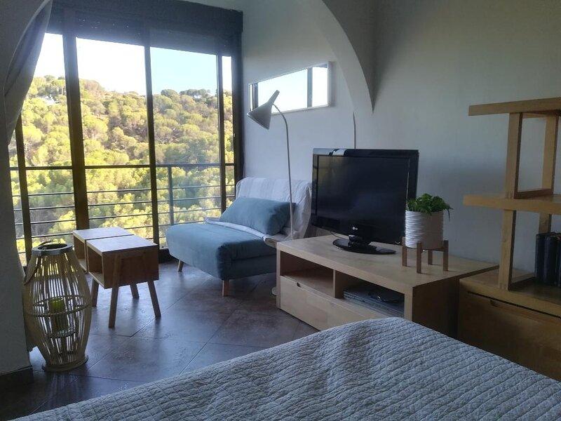 Estudio tipo loft Pantano San Juan, vacation rental in San Martin de Valdeiglesias