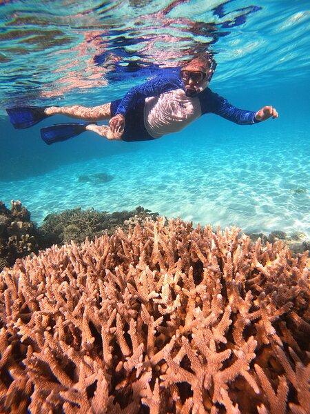 Coral Beach Maldives, holiday rental in Alifu Atoll