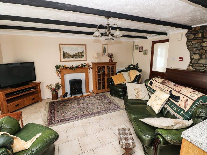Y Cartws, Llandysul, holiday rental in Llandysul