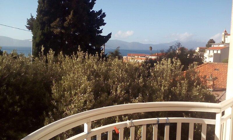 Biljana - 150 meters from pebble beach: A2(2+2) - Gradac, location de vacances à Gradac