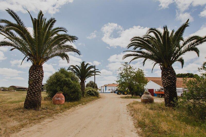 Monte da Serralheira 2, holiday rental in Escoural
