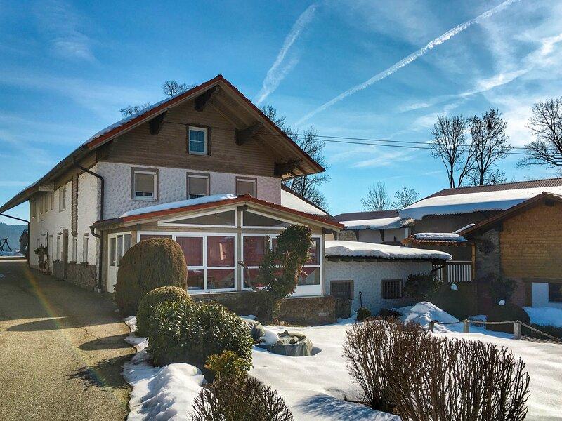 Amazing home in Bischofsmais with WiFi, 3 Bedrooms and Sauna, holiday rental in Regen
