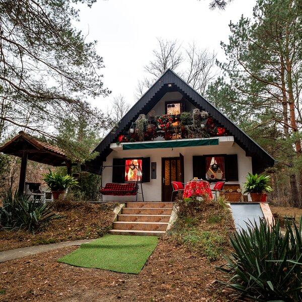 Ladybird Lodge, holiday rental in Pozarevac