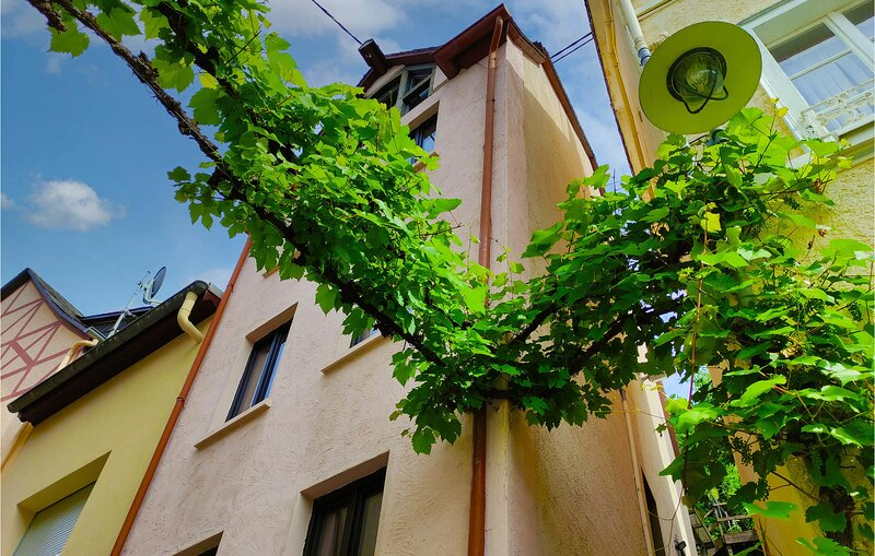 Nice apartment in Zell/Mosel with WiFi and 2 Bedrooms (DMO128), holiday rental in Puenderich