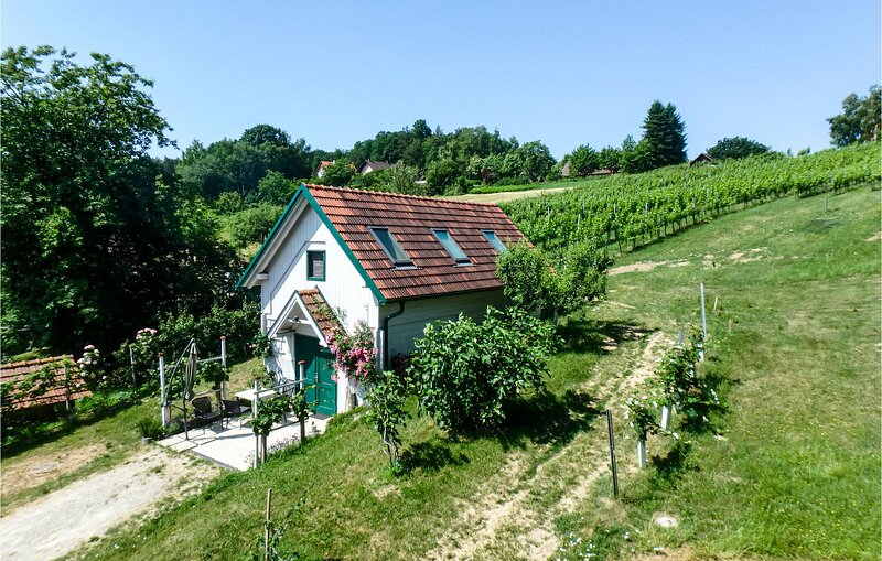 Nice home in Strem with WiFi and 1 Bedrooms (ABU180), alquiler de vacaciones en Eberau
