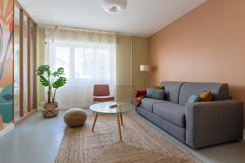 The Freedom - Newly Renovated 2BR in City Center, holiday rental in Mulhouse