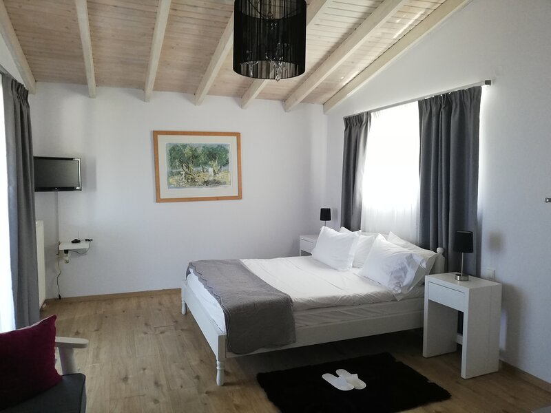 Blue Vedere sea view villa, holiday rental in Agia Pelagia