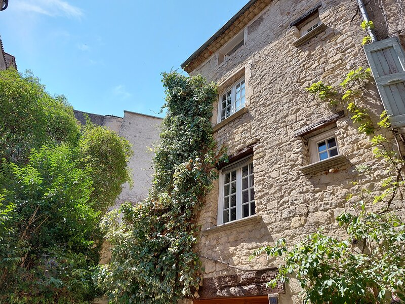 17th Century stone house in the heart of the old town of Forcalquier, holiday rental in Limans