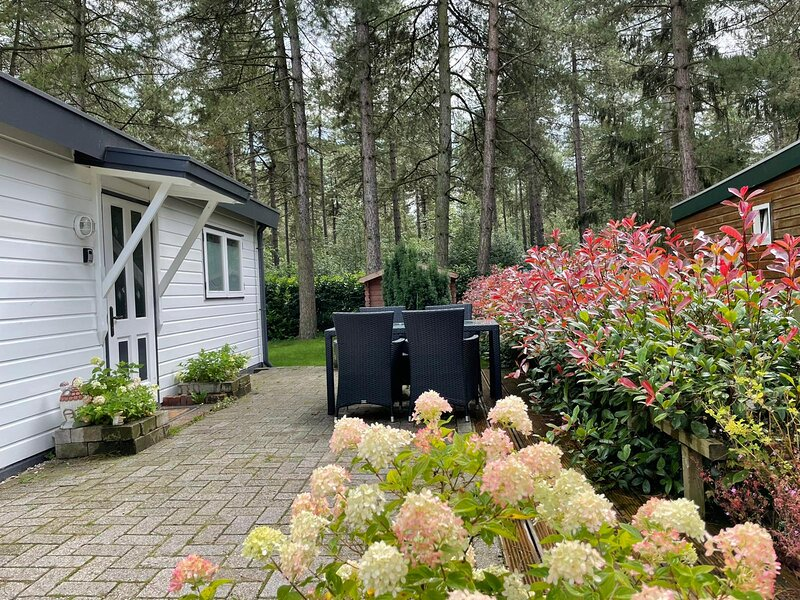 Luxe vakantiehuis in het bos, holiday rental in Westelbeers
