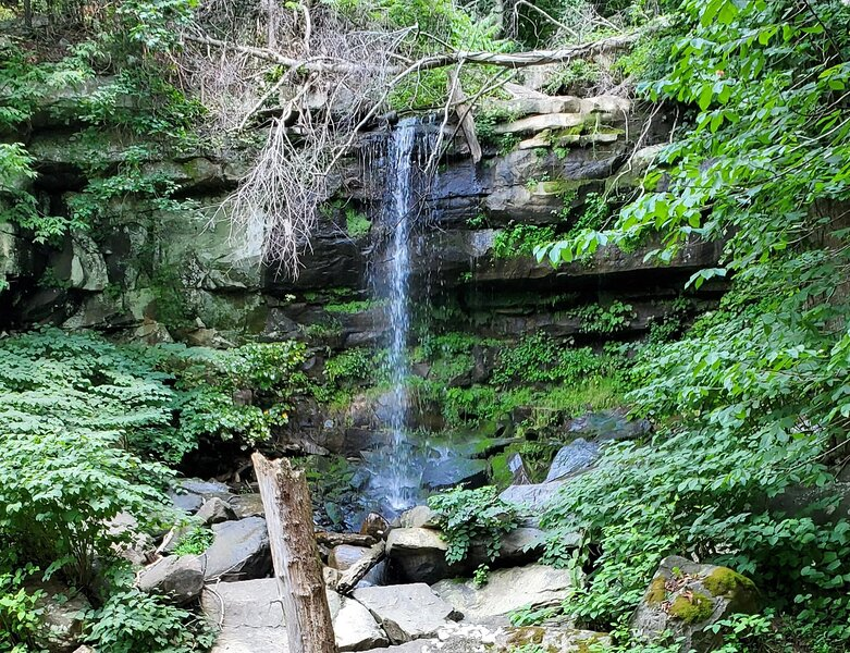 Tentrr State Park Site - WV Hawk's Nest State Park - Site I - Single Camp, holiday rental in Lansing