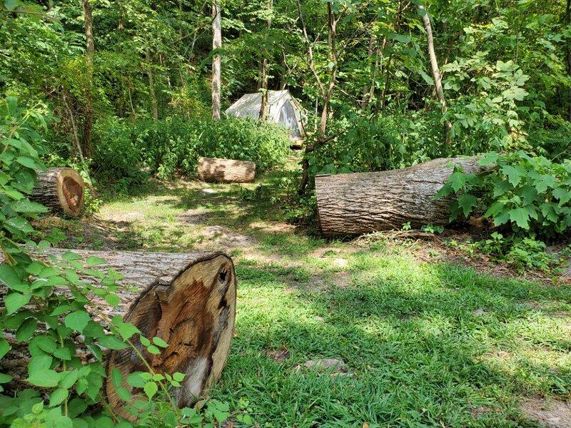 Tentrr State Park Site - WV Hawk's Nest State Park - Site D - Single Camp, alquiler de vacaciones en Summersville